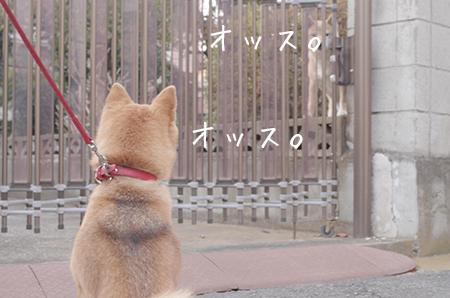 http://file.udon.sakeblog.net/46d43b49.jpeg
