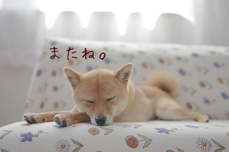 http://blog.cnobi.jp/v1/blog/user/5372066eaa7f42ee290a4176dda1b356/1417001705