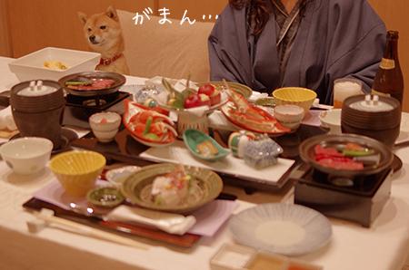 http://file.udon.sakeblog.net/IMGP7179.jpg