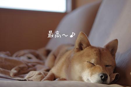 http://file.udon.sakeblog.net/IMGP7229.jpg