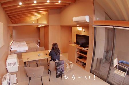 http://file.udon.sakeblog.net/IMGP7143.jpg