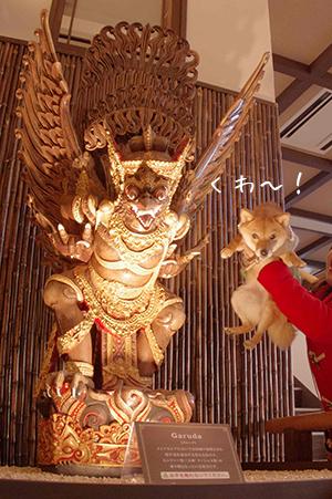 http://file.udon.sakeblog.net/IMGP7117.jpg