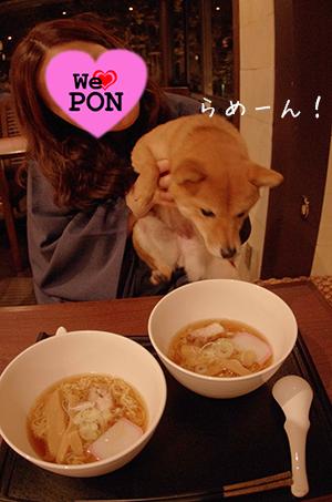 http://file.udon.sakeblog.net/IMGP7142.jpg