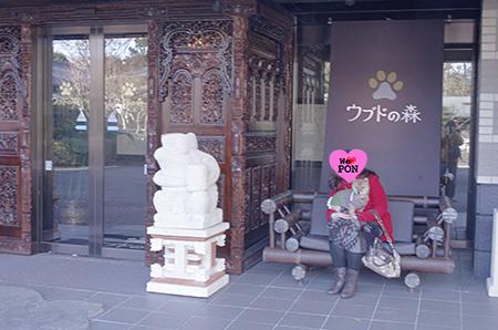 http://file.udon.sakeblog.net/IMGP7061.jpg