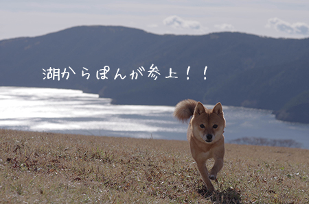 http://file.udon.sakeblog.net/IMGP7273.jpg