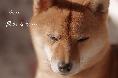 http://file.udon.sakeblog.net/IMGP6917.jpg