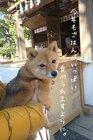 http://blog.cnobi.jp/v1/blog/user/5372066eaa7f42ee290a4176dda1b356/1420275690