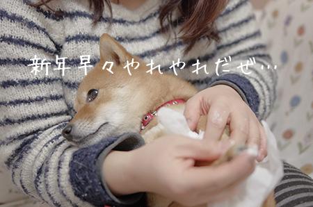 http://blog.cnobi.jp/v1/blog/user/5372066eaa7f42ee290a4176dda1b356/1420547763