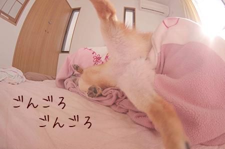 http://blog.cnobi.jp/v1/blog/user/5372066eaa7f42ee290a4176dda1b356/1421032349