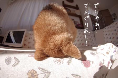 http://blog.cnobi.jp/v1/blog/user/5372066eaa7f42ee290a4176dda1b356/1421327354