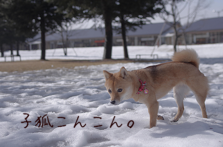 http://blog.cnobi.jp/v1/blog/user/5372066eaa7f42ee290a4176dda1b356/1422524398