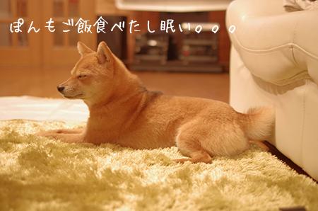 http://blog.cnobi.jp/v1/blog/user/5372066eaa7f42ee290a4176dda1b356/1422524420