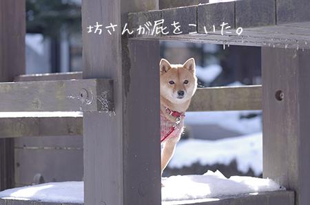 http://file.udon.sakeblog.net/IMGP8147.jpg