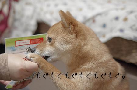 http://blog.cnobi.jp/v1/blog/user/5372066eaa7f42ee290a4176dda1b356/1422967655
