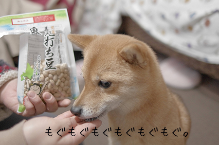 http://blog.cnobi.jp/v1/blog/user/5372066eaa7f42ee290a4176dda1b356/1422967663