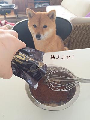 http://blog.cnobi.jp/v1/blog/user/5372066eaa7f42ee290a4176dda1b356/1423630204