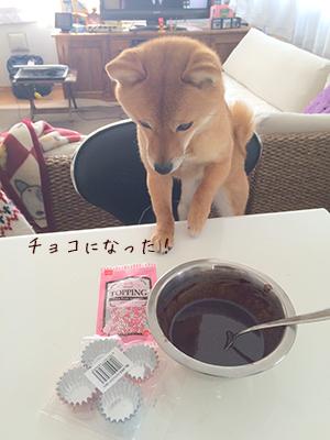 http://blog.cnobi.jp/v1/blog/user/5372066eaa7f42ee290a4176dda1b356/1423630206