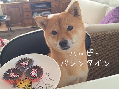 http://blog.cnobi.jp/v1/blog/user/5372066eaa7f42ee290a4176dda1b356/1423630208