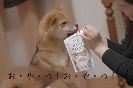 http://file.udon.sakeblog.net/IMGP8308.jpg