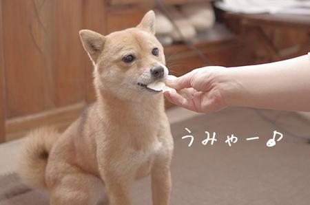http://blog.cnobi.jp/v1/blog/user/5372066eaa7f42ee290a4176dda1b356/1424149740