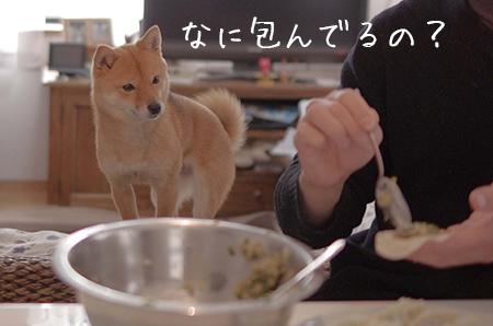 http://blog.cnobi.jp/v1/blog/user/5372066eaa7f42ee290a4176dda1b356/1424149773