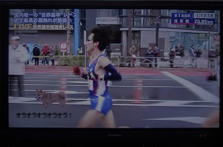 http://file.udon.sakeblog.net/IMGP8417.jpg