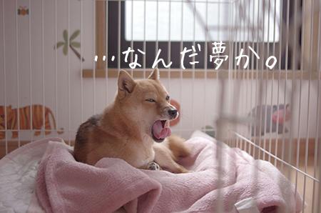 http://file.udon.sakeblog.net/IMGP8423.jpg
