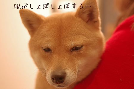 http://blog.cnobi.jp/v1/blog/user/5372066eaa7f42ee290a4176dda1b356/1425171061