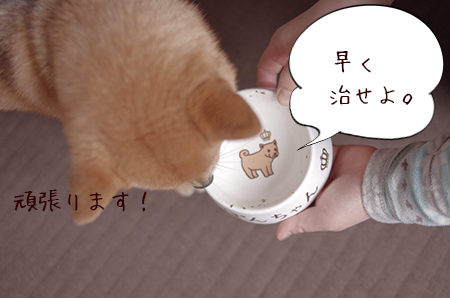 http://blog.cnobi.jp/v1/blog/user/5372066eaa7f42ee290a4176dda1b356/1425171066