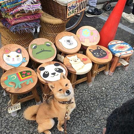 http://file.udon.sakeblog.net/IMG_1315.jpg