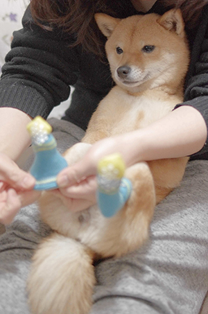 http://blog.cnobi.jp/v1/blog/user/5372066eaa7f42ee290a4176dda1b356/1425473777