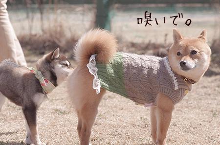 http://blog.cnobi.jp/v1/blog/user/5372066eaa7f42ee290a4176dda1b356/1425876745