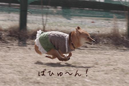 http://blog.cnobi.jp/v1/blog/user/5372066eaa7f42ee290a4176dda1b356/1425876748