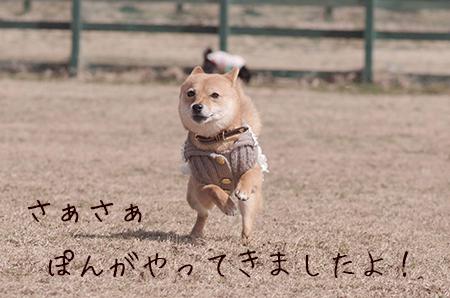 http://blog.cnobi.jp/v1/blog/user/5372066eaa7f42ee290a4176dda1b356/1425876753