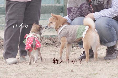 http://blog.cnobi.jp/v1/blog/user/5372066eaa7f42ee290a4176dda1b356/1425876797