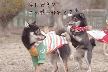 http://blog.cnobi.jp/v1/blog/user/5372066eaa7f42ee290a4176dda1b356/1425876811
