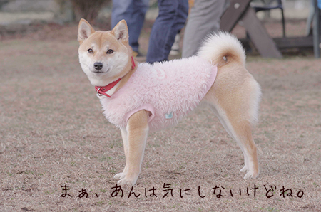 http://blog.cnobi.jp/v1/blog/user/5372066eaa7f42ee290a4176dda1b356/1425884188