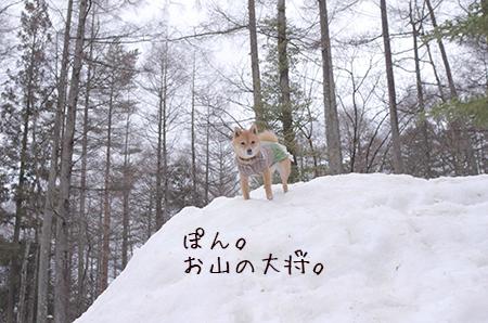http://blog.cnobi.jp/v1/blog/user/5372066eaa7f42ee290a4176dda1b356/1426167384