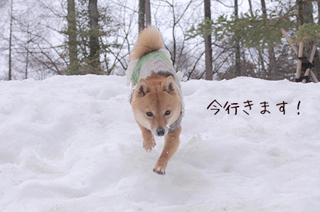 http://blog.cnobi.jp/v1/blog/user/5372066eaa7f42ee290a4176dda1b356/1426167391