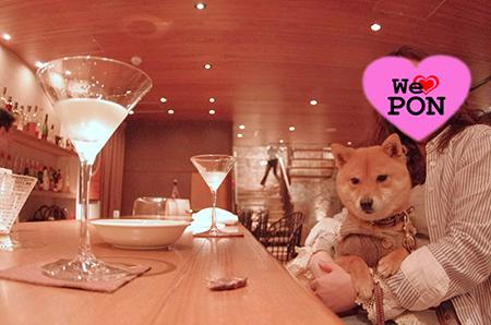 http://file.udon.sakeblog.net/60c9cc35.jpeg