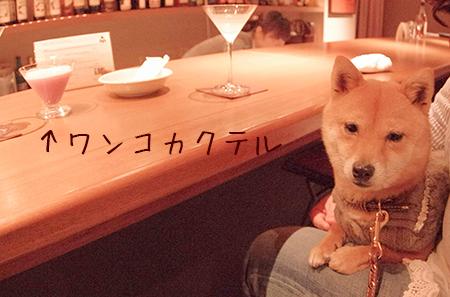 http://blog.cnobi.jp/v1/blog/user/5372066eaa7f42ee290a4176dda1b356/1426320535