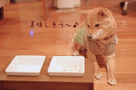 http://blog.cnobi.jp/v1/blog/user/5372066eaa7f42ee290a4176dda1b356/1426320542