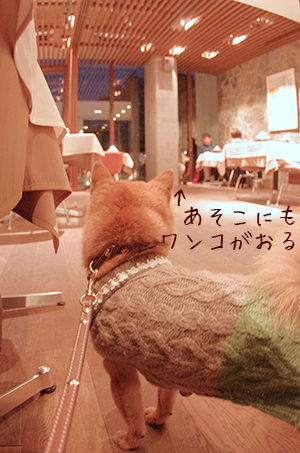 http://blog.cnobi.jp/v1/blog/user/5372066eaa7f42ee290a4176dda1b356/1426320549