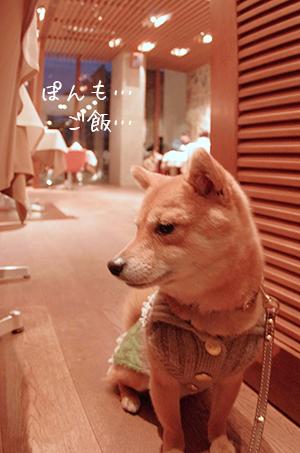 http://blog.cnobi.jp/v1/blog/user/5372066eaa7f42ee290a4176dda1b356/1426320555