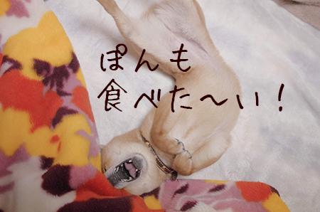 http://blog.cnobi.jp/v1/blog/user/5372066eaa7f42ee290a4176dda1b356/1426584571