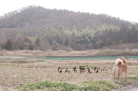 http://blog.cnobi.jp/v1/blog/user/5372066eaa7f42ee290a4176dda1b356/1426591117