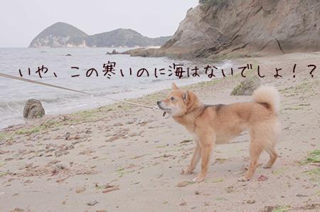 http://file.udon.sakeblog.net/b80979e8.jpeg