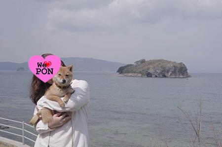 http://file.udon.sakeblog.net/IMGP8869.jpg