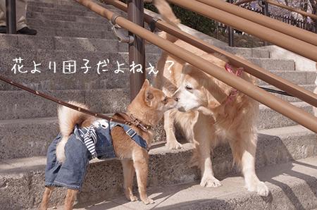 http://blog.cnobi.jp/v1/blog/user/5372066eaa7f42ee290a4176dda1b356/1427787445