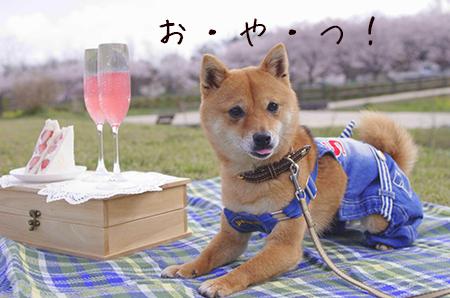 http://blog.cnobi.jp/v1/blog/user/5372066eaa7f42ee290a4176dda1b356/1427977223